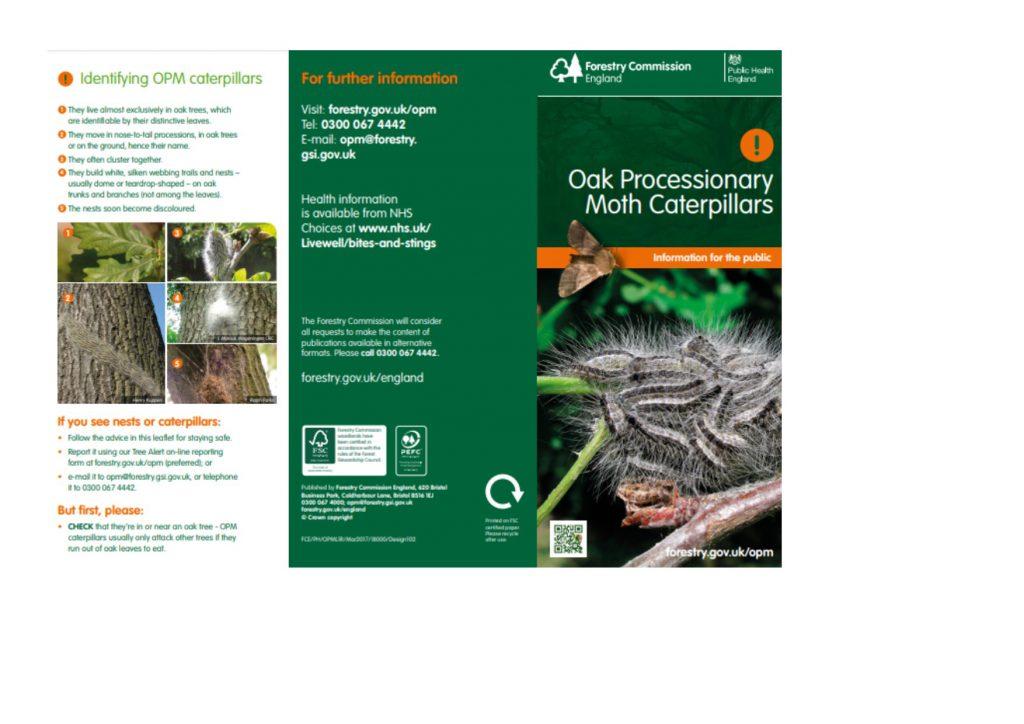 Oak Processionary Moths - OPM Leaflet